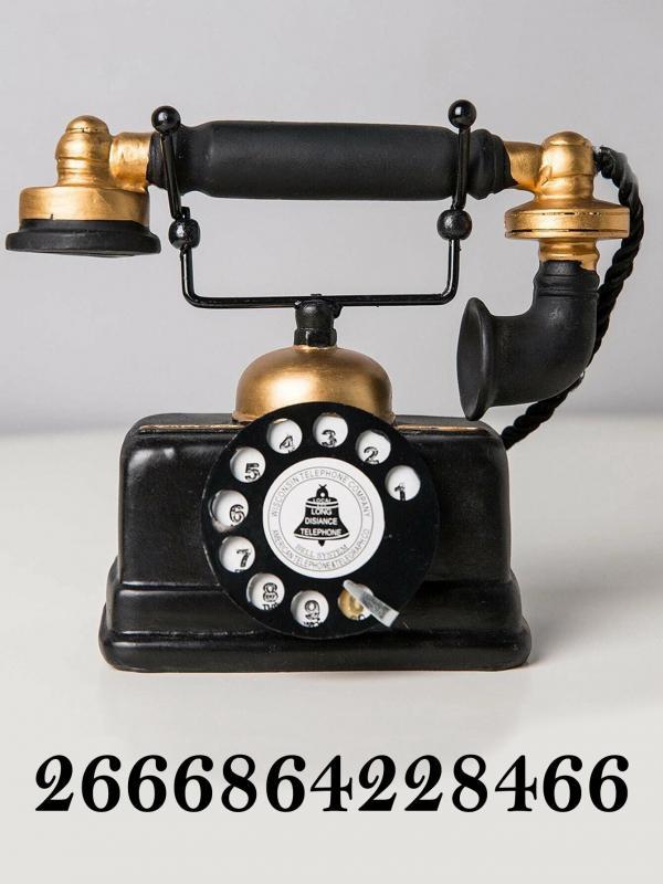 Telephone copier